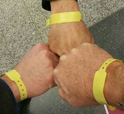 ECR 2015 yellow wristbands