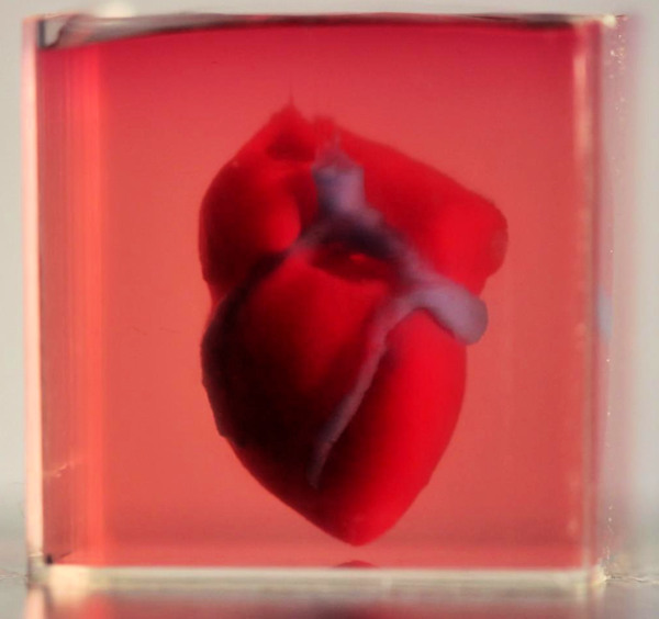 Realistic 3D-printed heart using bioink