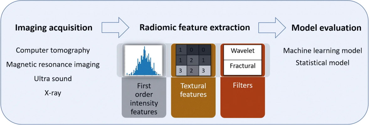 Illustration of radiomics workflow for various applications involving image acquisition, radiomic feature extraction, and model evaluation for diagnosis and prediction