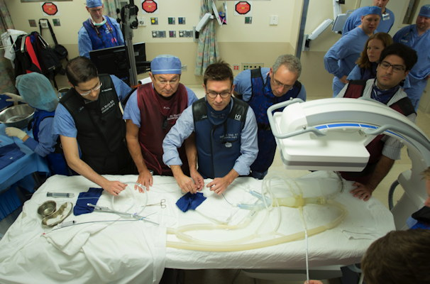 Teamwork and a hands-on approach are essential in endovascular simulation